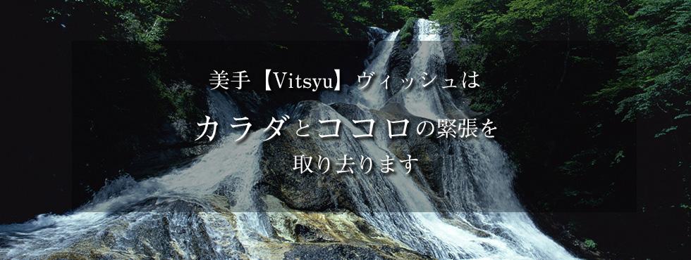 VITSYU画像